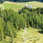 Alpe Nemes Huette 02