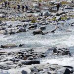 Ursprungbach Moeseler Gletscher 07