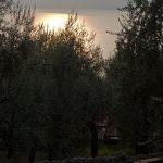Abendstimmung am Gardasee 08