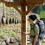 Erlebnisweg Kneipp Parcours Proveis 17