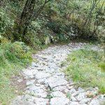 Steinweg am Gardasee 01