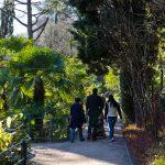Gilf Promenade 04