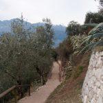 Wanderweg Burgruine