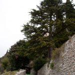 Aufstieg zum unteren Burghof