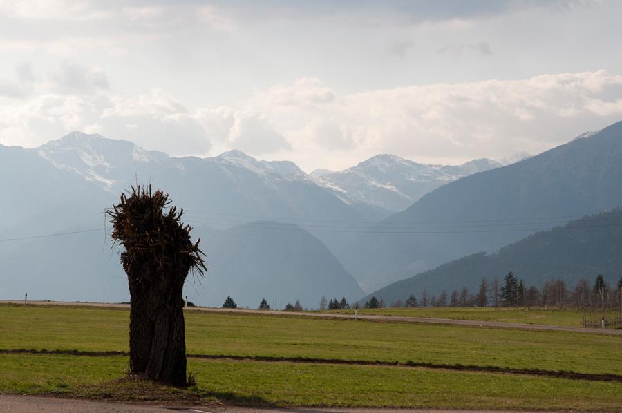 20120325 Weide mit Brenta Dolomiten 001