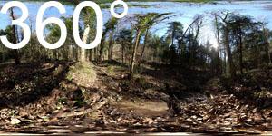 Mitten im naturbelassenen Frühlingstal