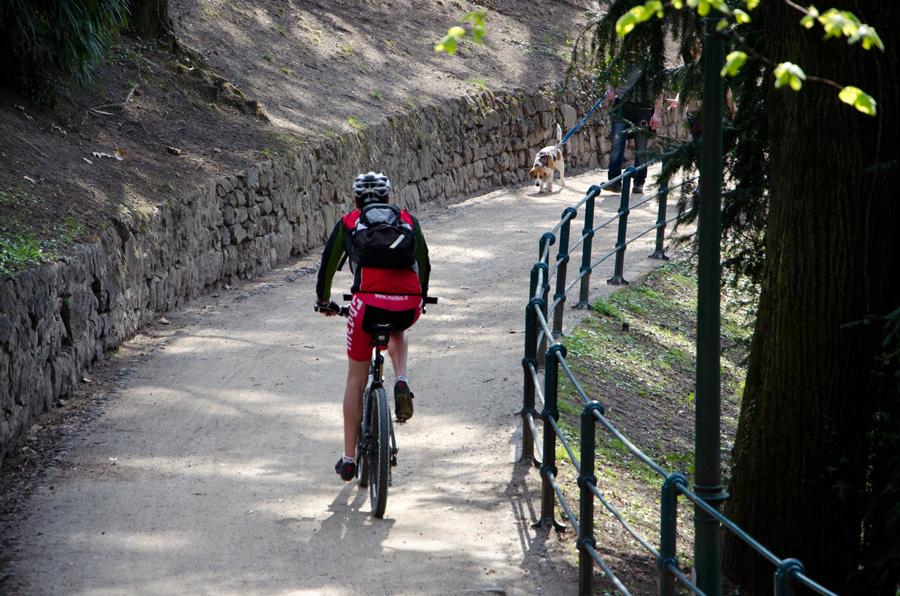 Radfahrer auf Promenade