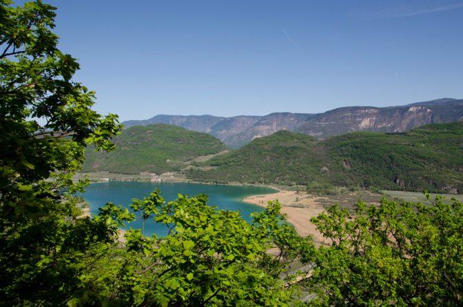 Eichenblätter und Kalterer See