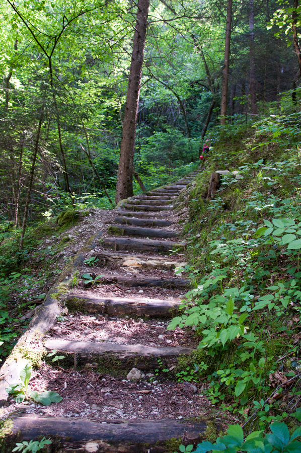 Waldweg-Flusspark-Novella-01