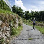 Nonstal im Trentino