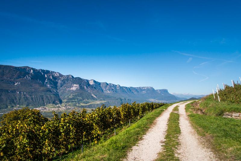 Die Bahntrasser der ehemaligen Fleimstalbahn ist ein idealer Spazierweg und Mountainbikeweg