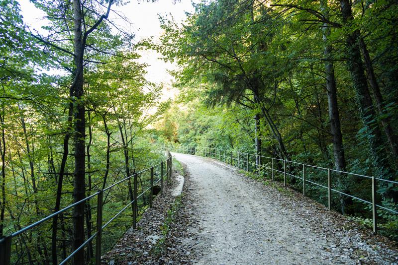 Spazier- und Mountainbikeweg Bahntrasse Fleimstalbahn