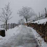 Winterwanderung Kurtatsch