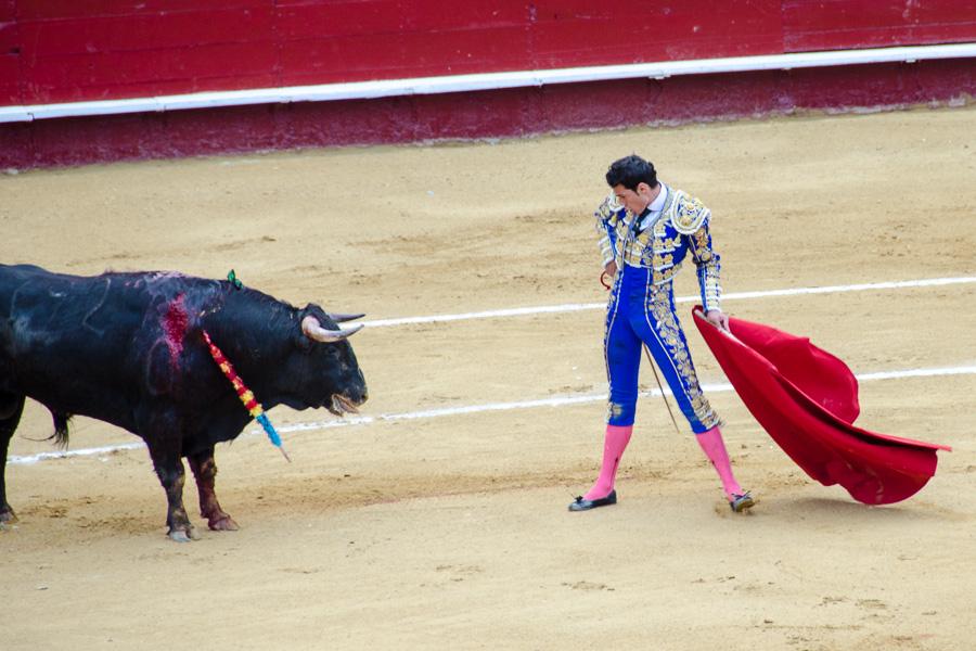 Stierkampf in Valencia