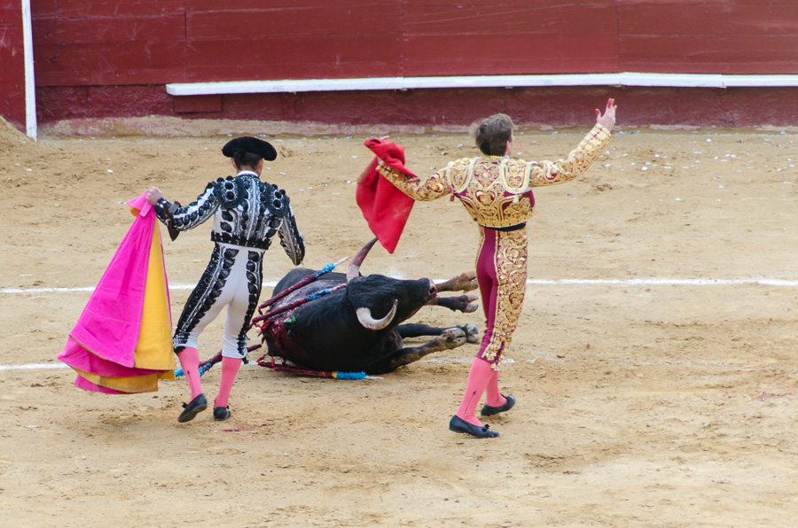 Jubel in der Arena, der Matador hat den Stier bezwungen und wird gefeiert