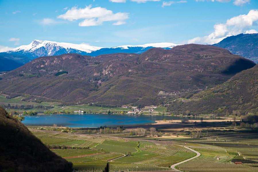 Blick von Tramin zum Kalterer See