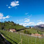 Höchster Kirchturm Tirols mit Kastelatz Weinberg