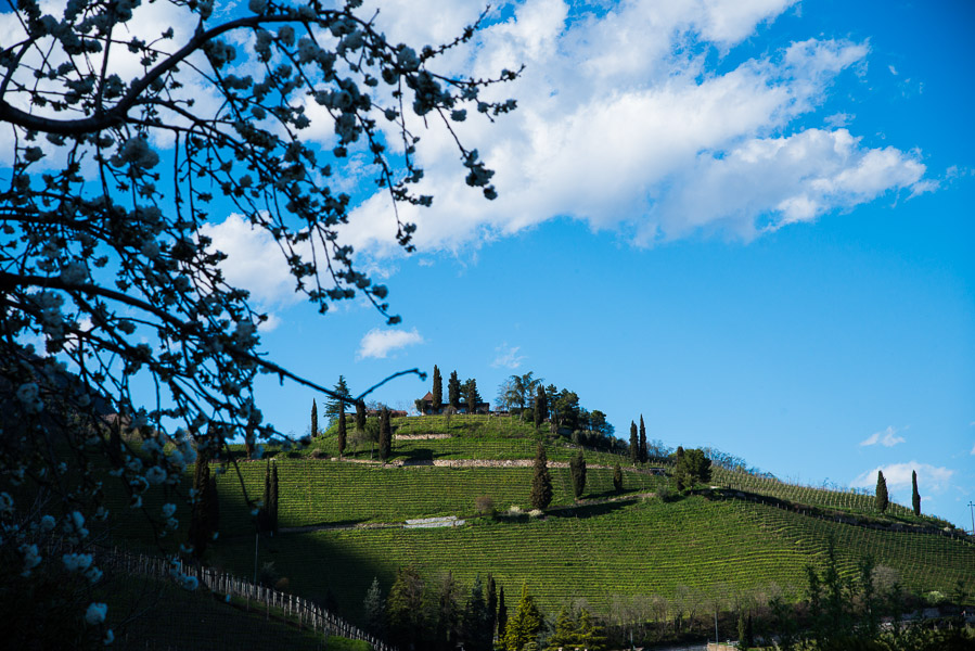 Sonnenuntergang im Frühling im Süden Südtirols