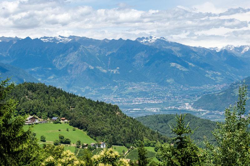 Blick nach Meran und Dorf Tirol