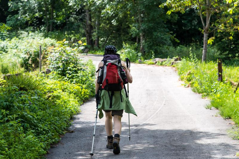 wandern auf dem Seerundweg Mesotrekking  im Val di Pinè