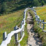 Wanderweg mit Holzzaun