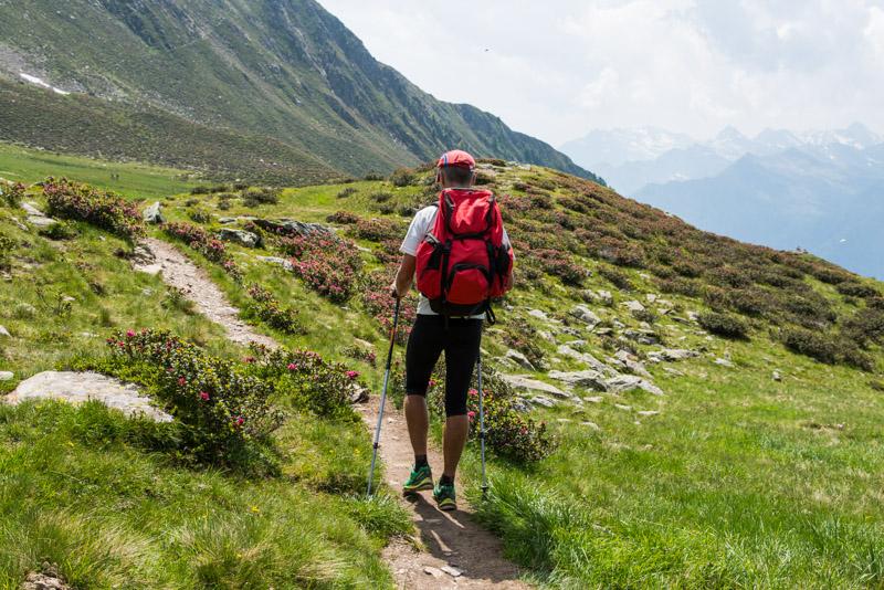 Wanderer auf der Hirzer Alm