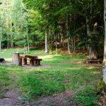 Die Göllerwiese - Wanderung Gummerer Hof - Überetscher Hütte