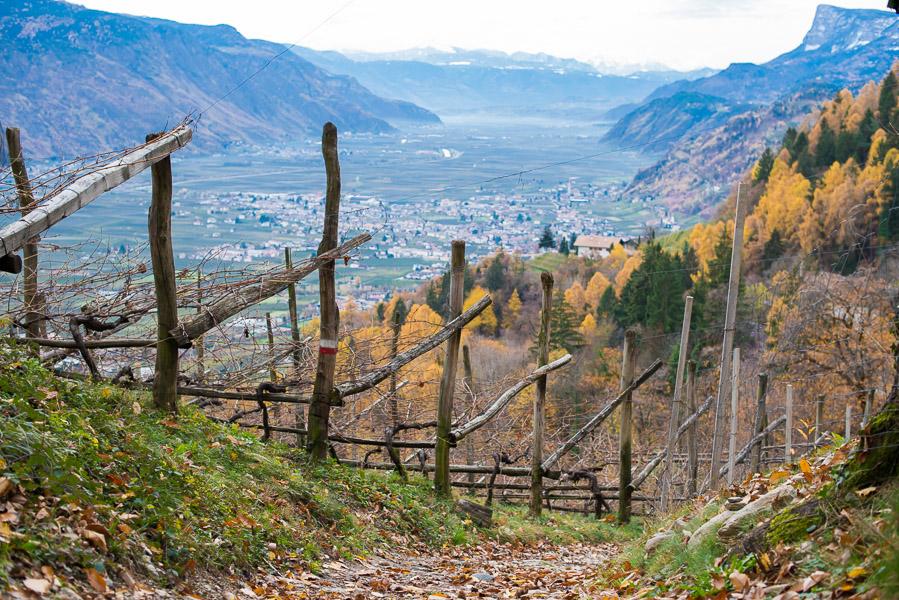 Waalweg Höhenweg mit Blick auf Lana