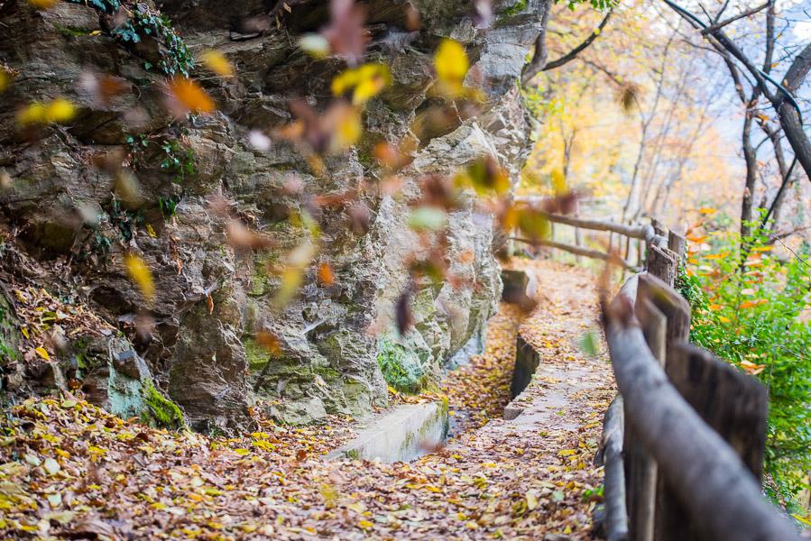 Waalweg Marling im Herbst
