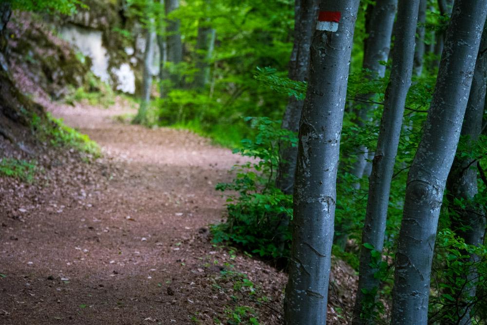 Fennpromenade in Klobenstein
