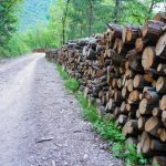Holz am Wegesrand