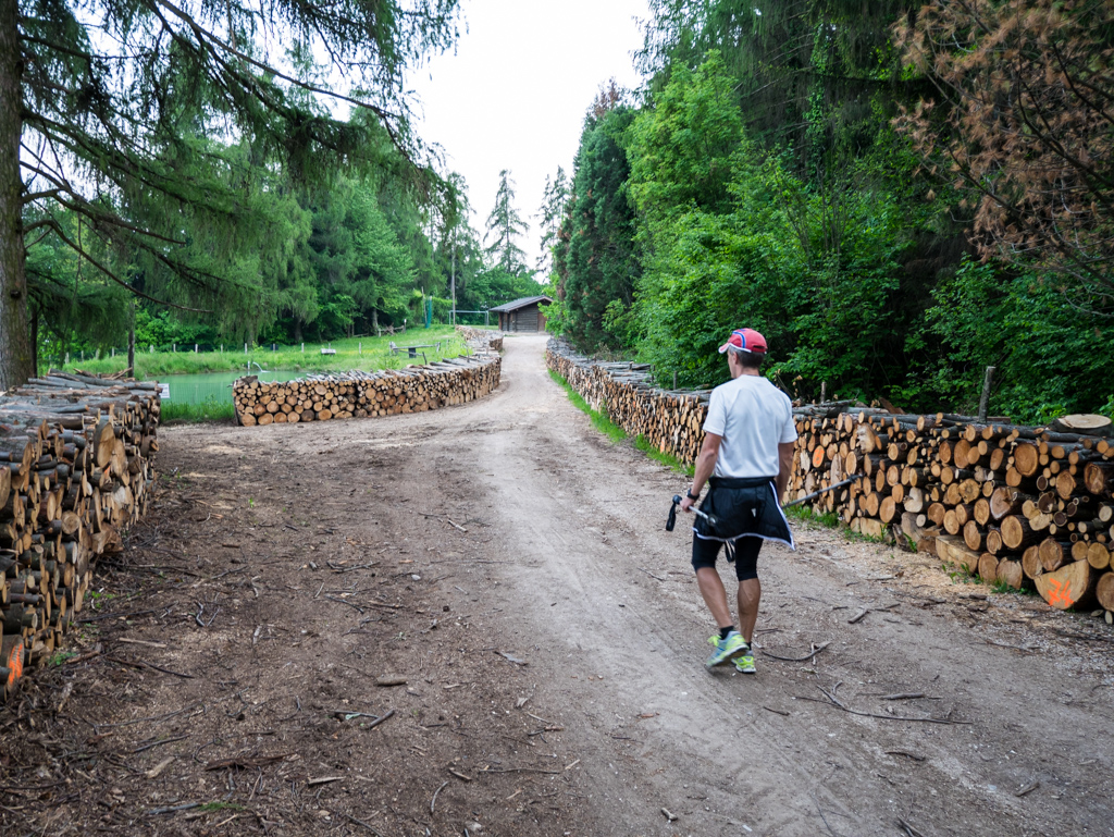 Zoggler mit viel Holz