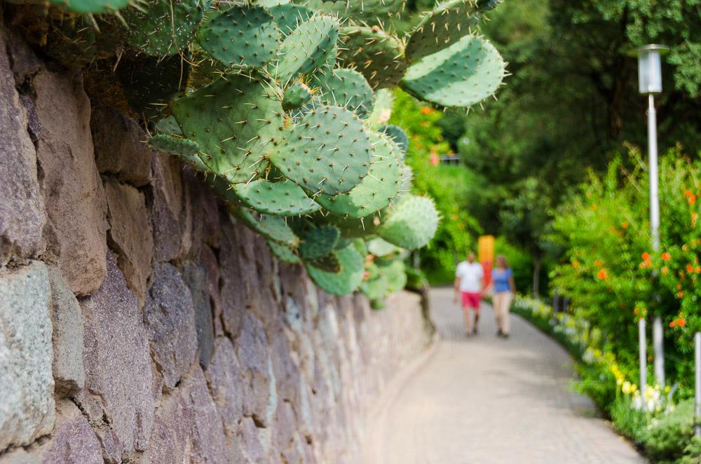 Spazierweg in den Gärten von Schloss Trauttmansdorff