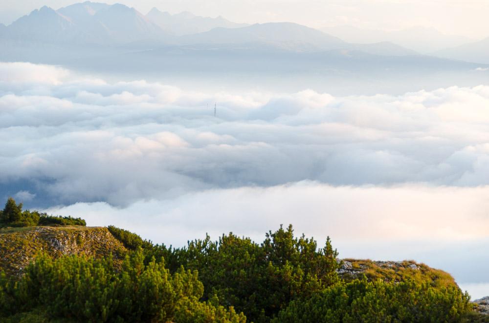 Nebel über dem Penegal