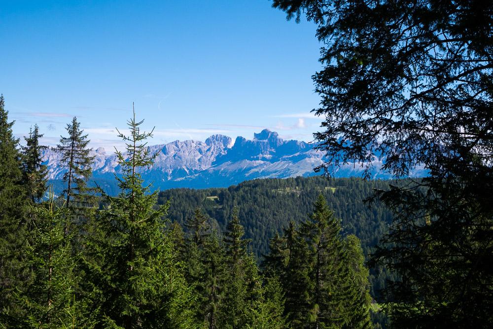 Rosengartenspitze