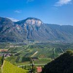 Ausblick vom Weinlehrpfad Kurtatsch auf die Madrutwand