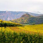 Im Herbst im Bärental in St. Josef am See