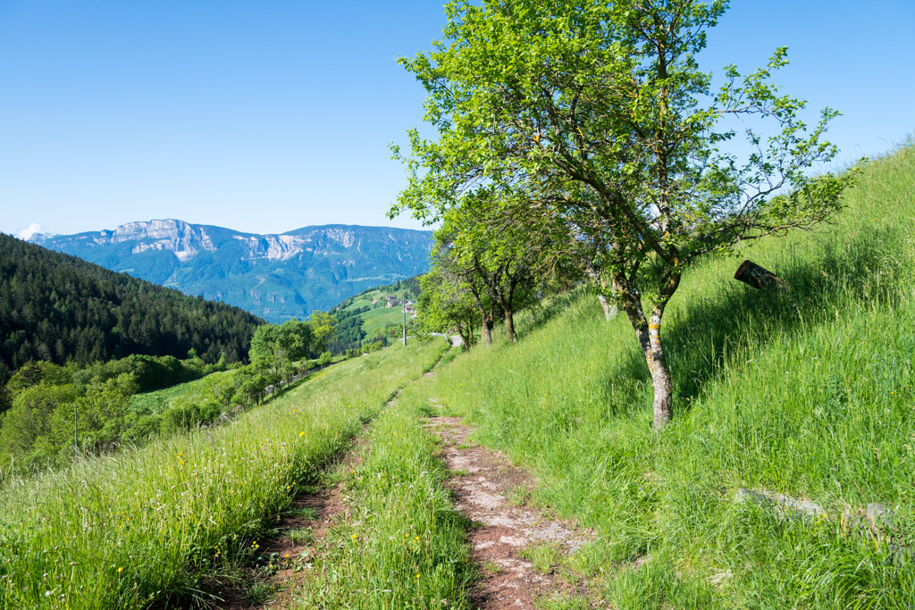 Wanderweg in Mölten