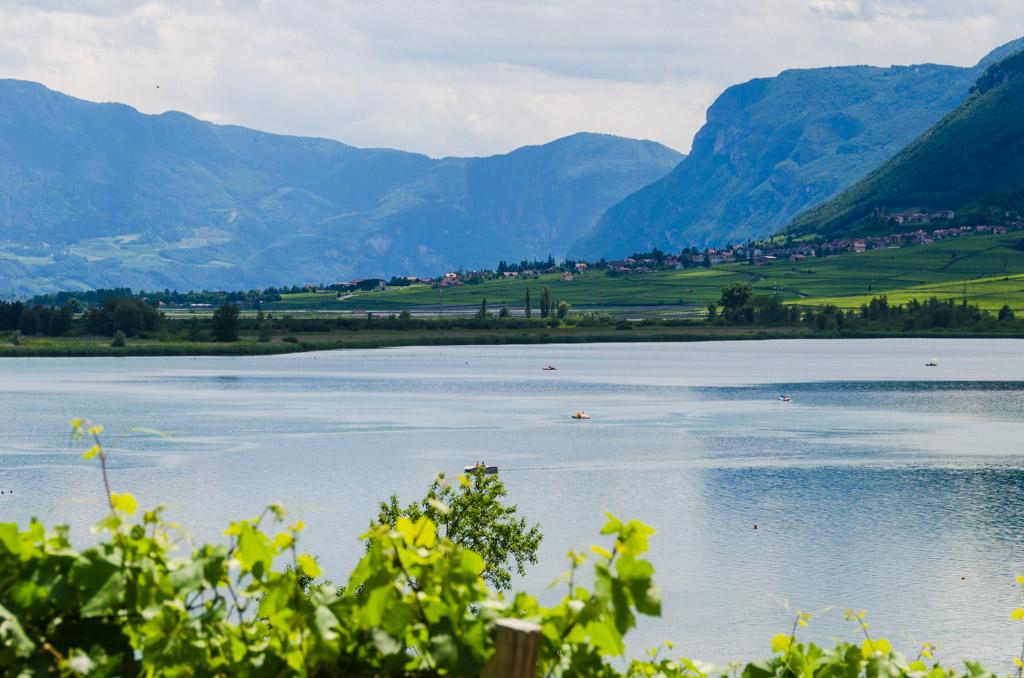 Kalterer See Blick nach Tramin