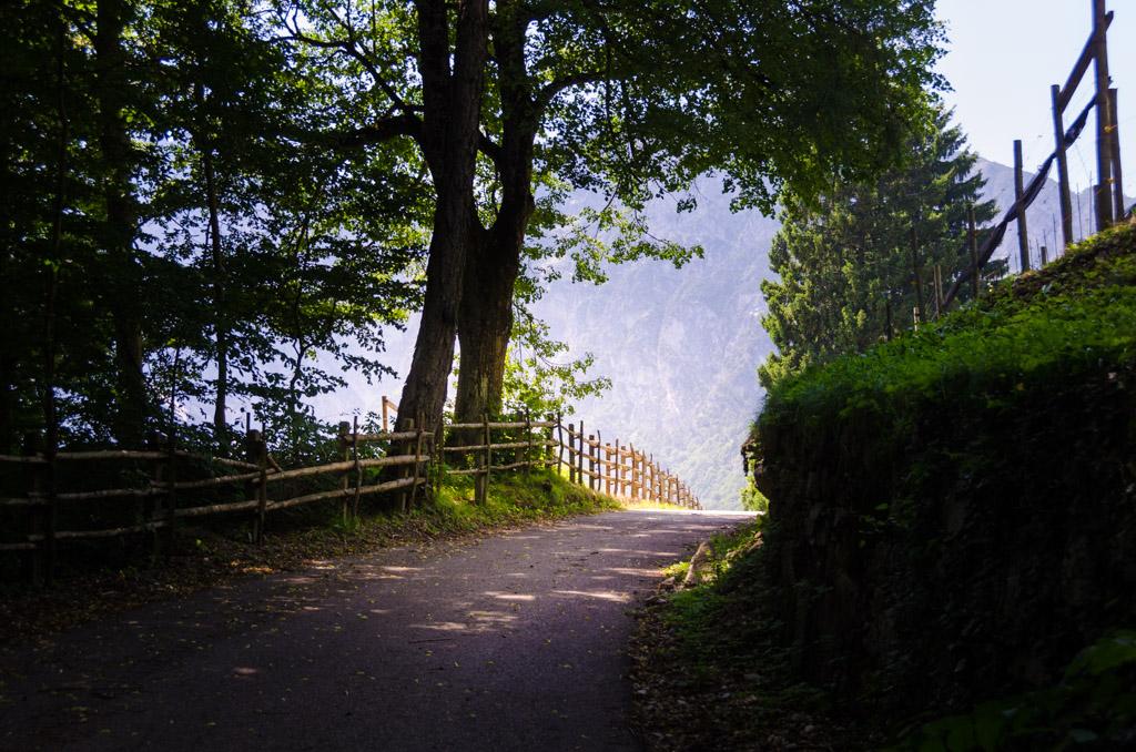 """Vom Fennberger See in Richtung Weinhof """"Hofstatt"""""""