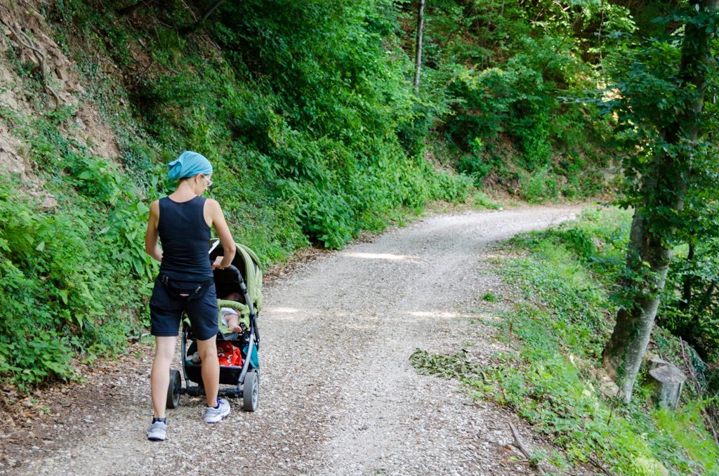 Der Forstweg 4B zwischen Altenburg und Söll ist Kinderwagen tauglich