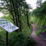 Informationstafel Naturerlebnisweg Tramin