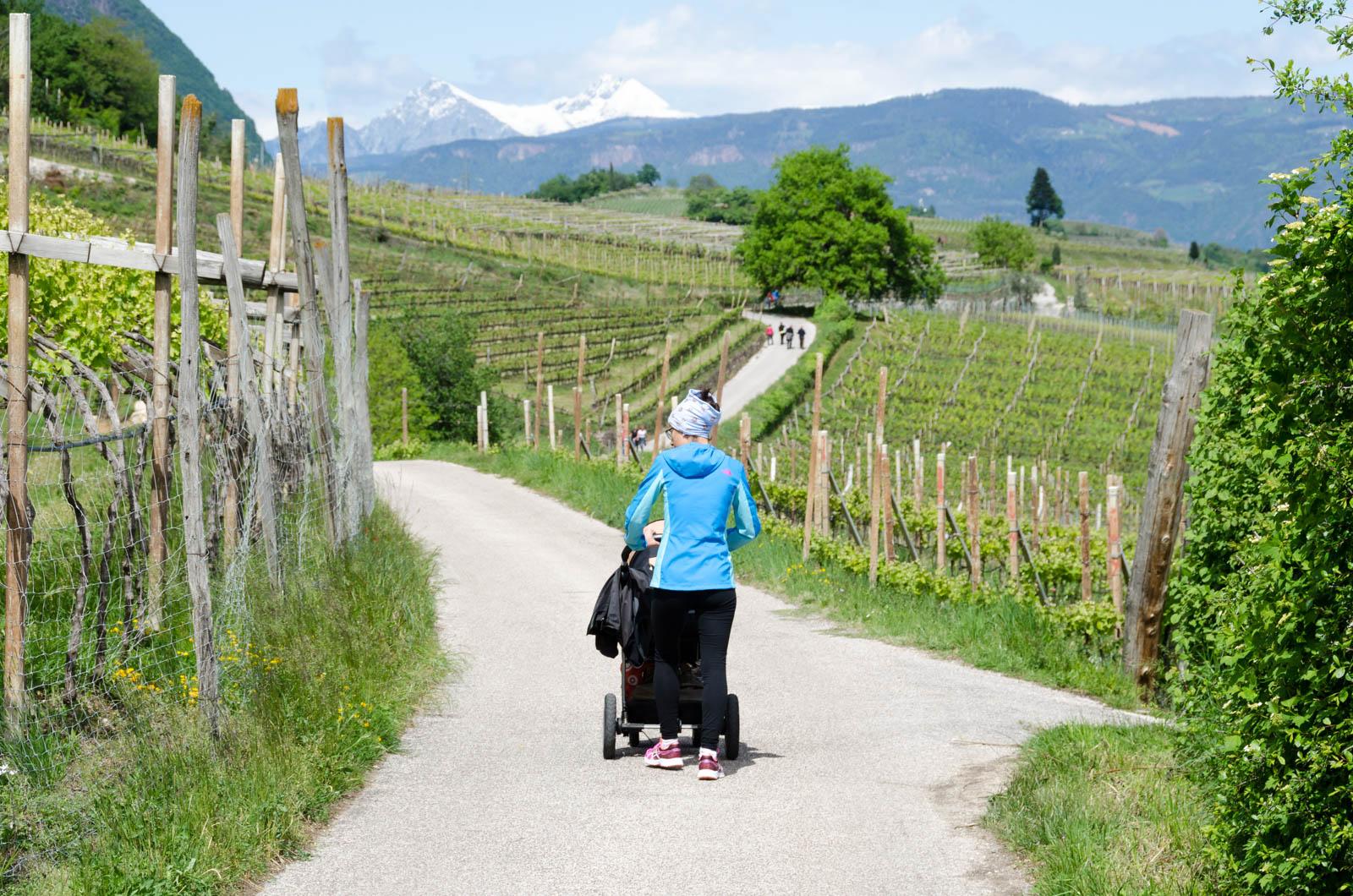 Kinderwagen tauglicher Spazierweg von St. Josef am See nach Kaltern Dorf