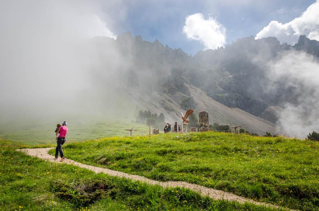 Station Tierwelt der Alpen am Erlebniswanderweg Natur im Latemarium