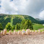 Station Balancieren auf Milchkannen am Erlebniswanderweg LATEMAR.ALP im Latemarium