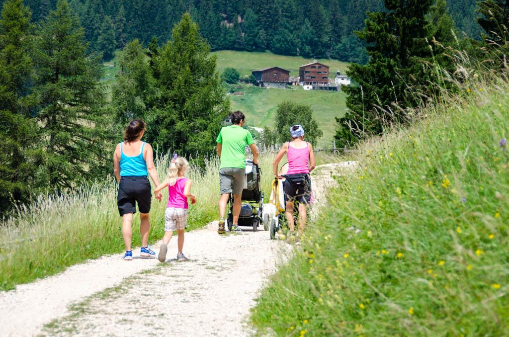 Der Wanderweg vom Bewaller zum Karersee verläuft teilweise entlang von Wiesen