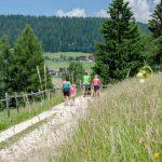 Wanderweg zum Karersee