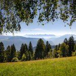 Ausblick vom Rainguthof Richtung Rosengarten