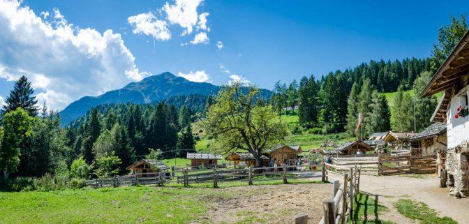 """Bauernhof """"Tierwelt Rainguthof"""" unterm kleinen Laugen"""