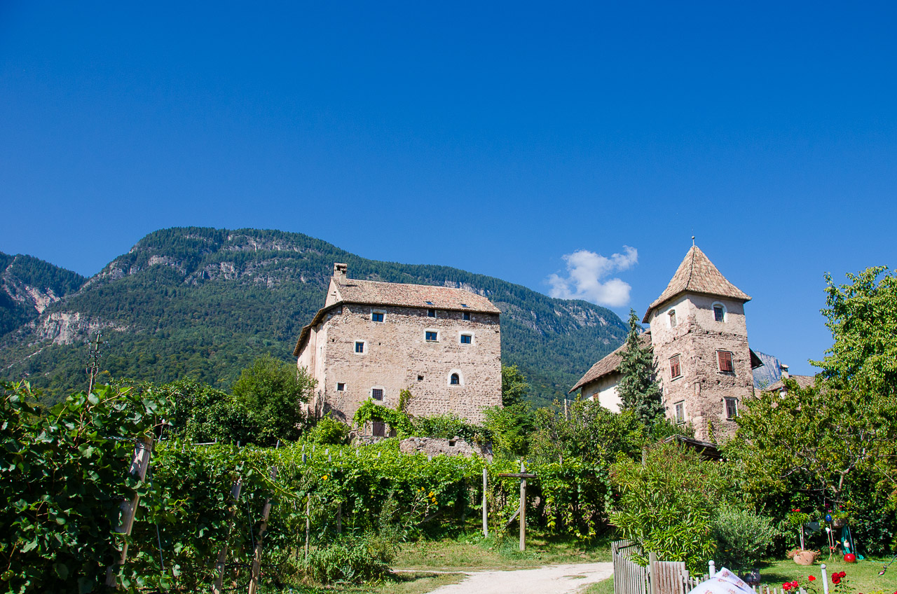 Schloss Moos-Schulthaus